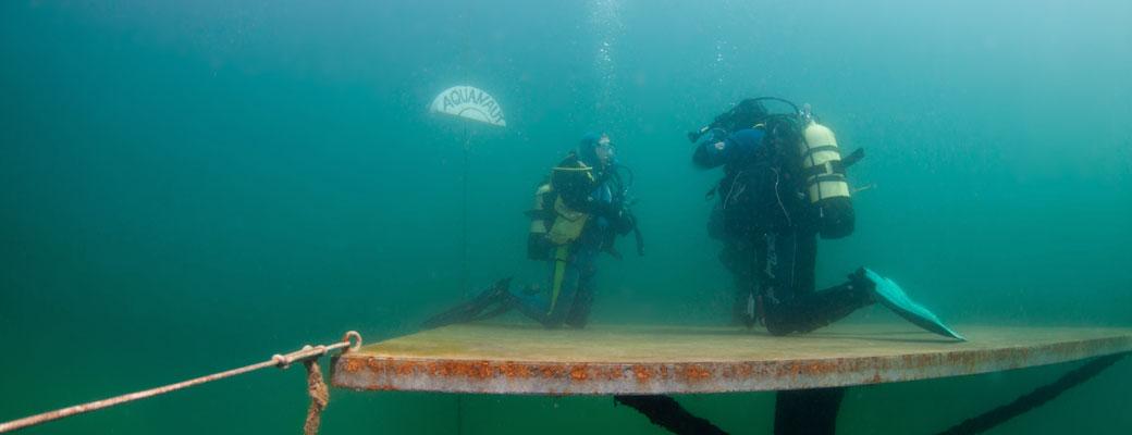 Rescue Diver!